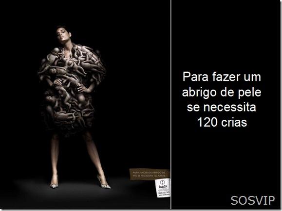Campanha Publicitaria Conscientizacao (2)