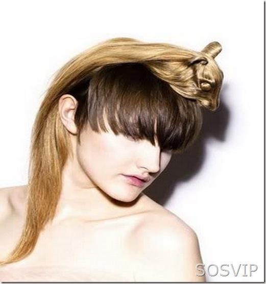 Penteados exoticos e diferentes (1)
