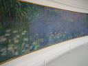 Monet's Water Lilies inside the Orangerie