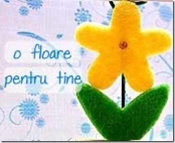 floare_pentru_tine