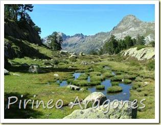 20080416102905-20070905103401-foto228-pirineo-aragones