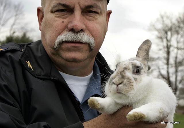 2009复活节 真的是兔子