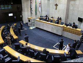 Foto: Evelyn Ruman - Câmara Municipal de São Paulo