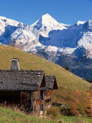 location gite montagne en haute altitude au chalet d'alpage,l'alpage ou estive ce sont des paturages d'altitude,grande prairie de montagne ou sejournent les troupeaux , chalet d'alpage lieu de travail et maison du berger son activité le pastoralisme surveillance des troupeaux fabrication du fromage d'alpage ,alpage de moyenne altitude la montagnette , montée des troupeaux pour paturer en montagne l'ete ce sont les transhumances estivales pour les bovins , ovins et caprins