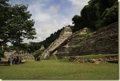 Palenque 288