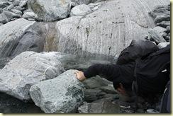 Glaciar Franz Josef (132)