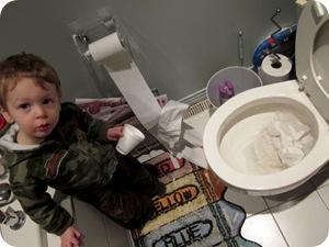 toiletpaperroll