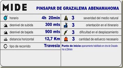 plantilla_midecolor copia