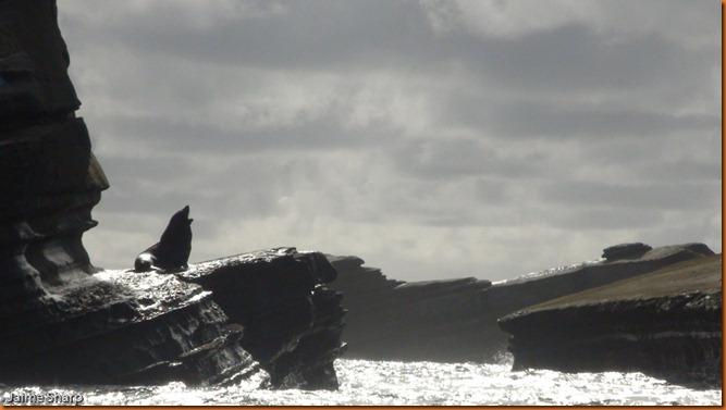 kayakdownundernzleg2-04280