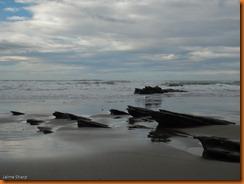 kayakdownundernzleg3-00530