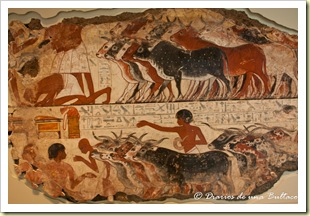 British Museum-7