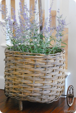 Basket 207