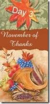 November of Thanks3 at 'Rebecca Writes'