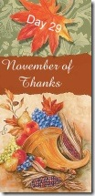 November of Thanks 29 at 'Rebecca Writes'