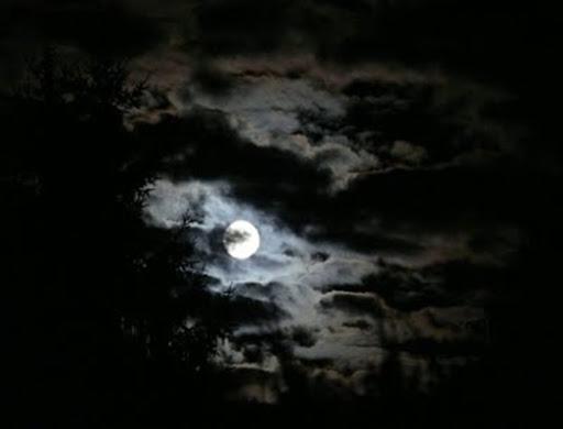 2007_07_28_Full Moon 023