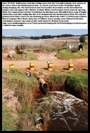Acid Mine Drainage from West Rand Mines Uncontrolled decant into Tweelopies spruit
