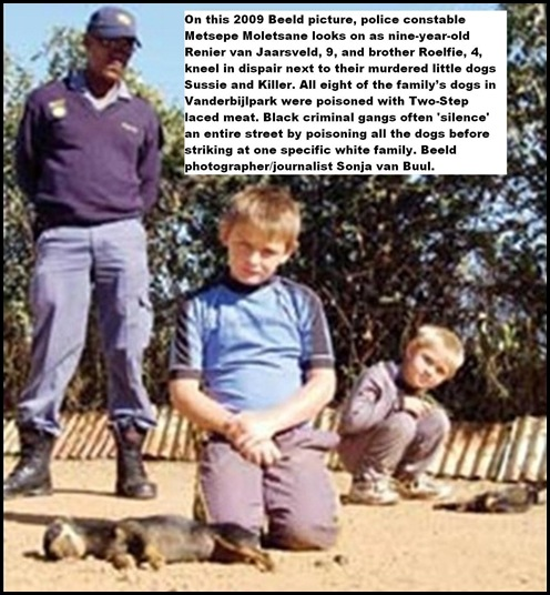Dogs poisoned Afrikaans kids grieve VdBijlParkApr182009