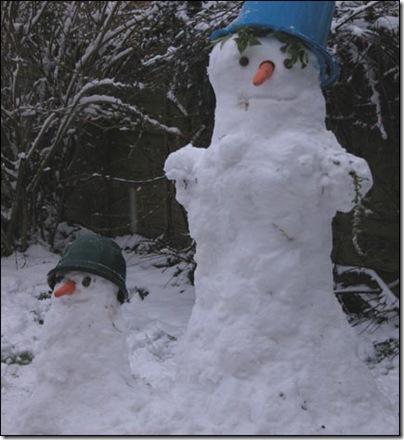 snow_feb_2007_01_431x470