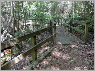 Walking Bridge on the Terrora Trail