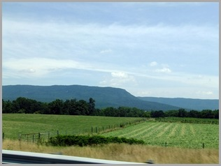 Allegheny Mountain Range