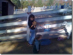 11-6-09 Pumpkin patch15