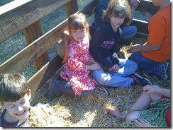 11-6-09 Pumpkin patch4