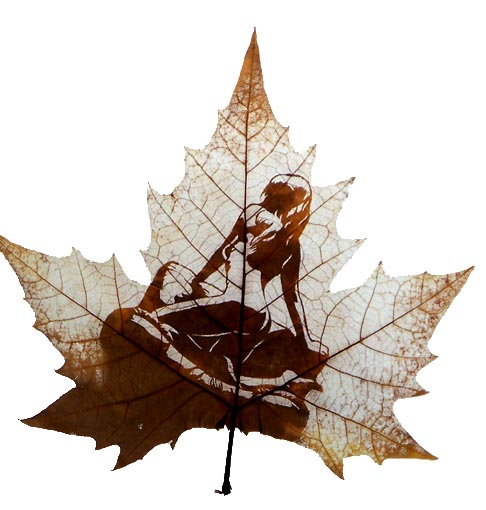 Amazing Examples 