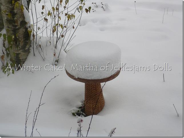 Snow December 20 2009 007
