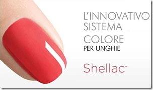shellac2