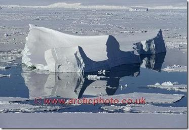 iceberg ross sea