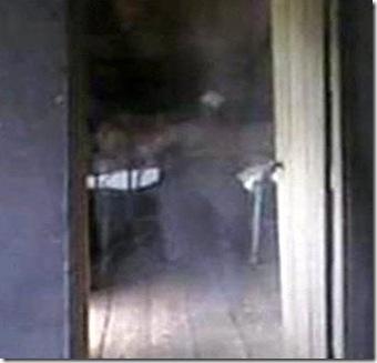 Fantasma No Museu