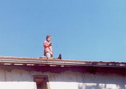 Винсент на крыше - мир на земле