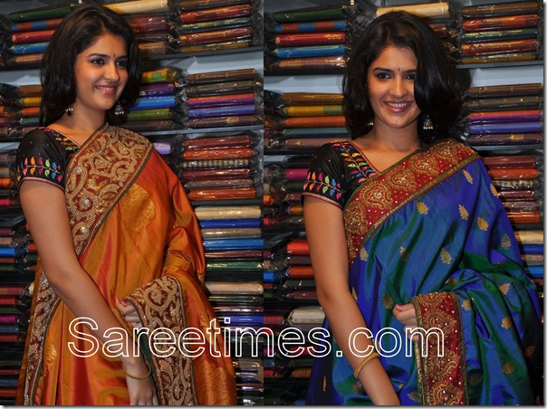 Deeksha_Traditional_Saree