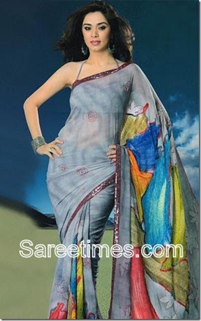 Nargis-Bagheri-Designer-Saree