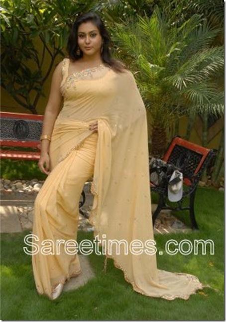 Namitha_Designer_Saree