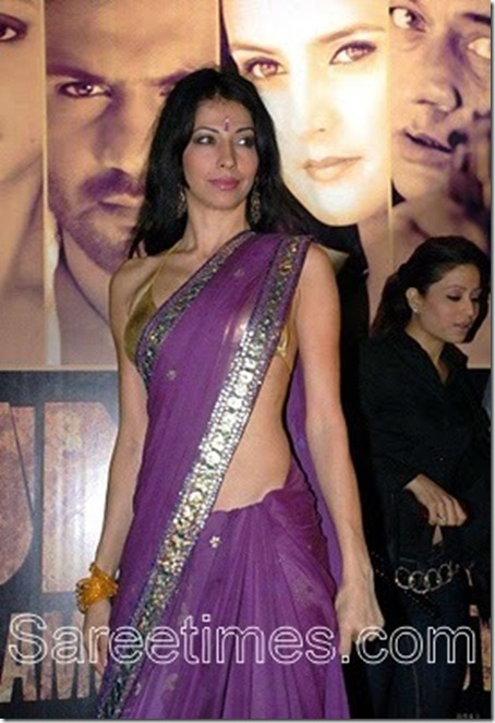 Vida_Samadzai_Purple_Saree