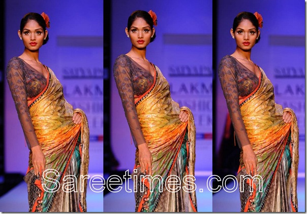 Satya_Paul _Full_Sleeves_Saree_Blouse