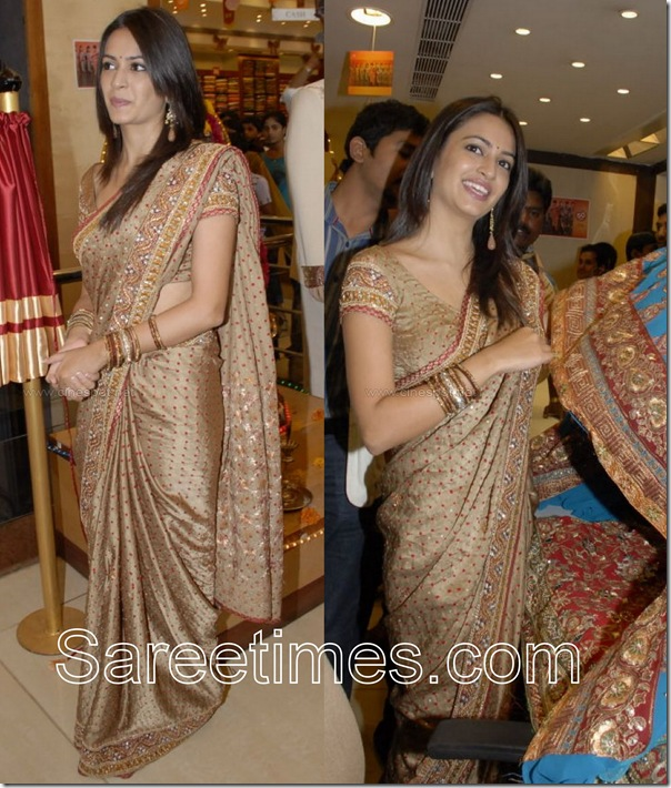 Kriti_Kharbanda_Saree