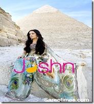 Celina_Jaitley_Designer_Saree (7)