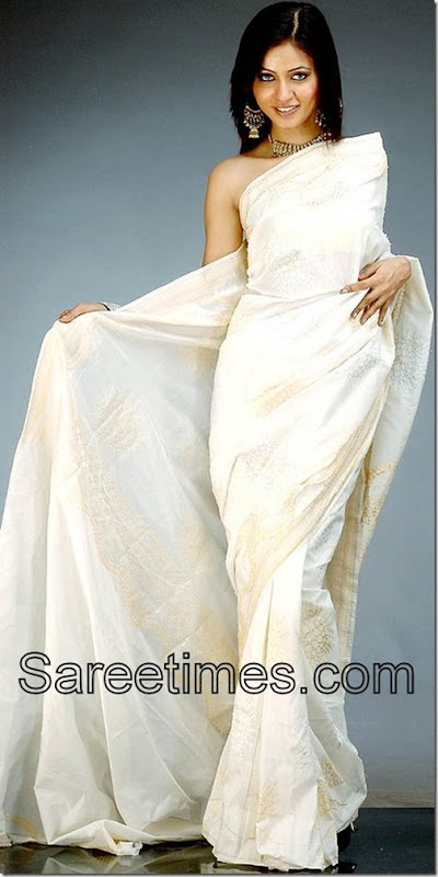 White_Embroidery_Saree