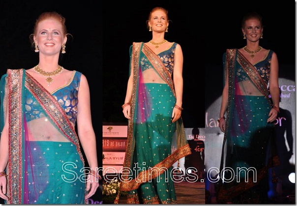 Embroidery_Shimmer_Sari