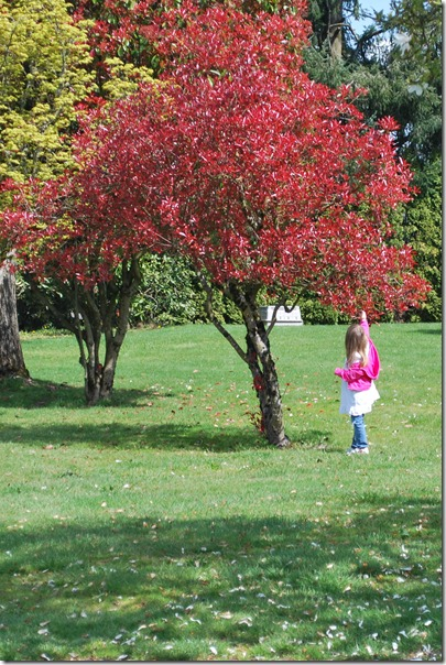 Playing in the yard 017