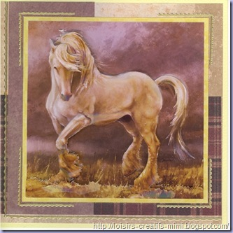 carte 3D cheval