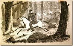 sarah on horseback[4]