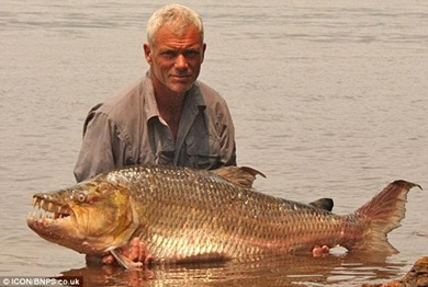 ferocious giant piranha which has been known to eat CROCODILES