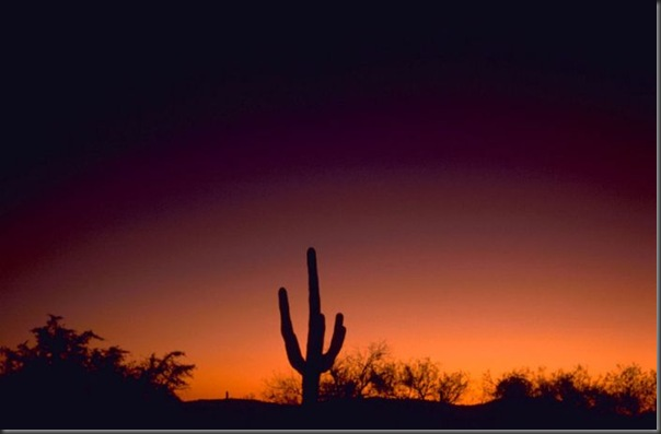 Lindas imagens do pôr do Sol (6)