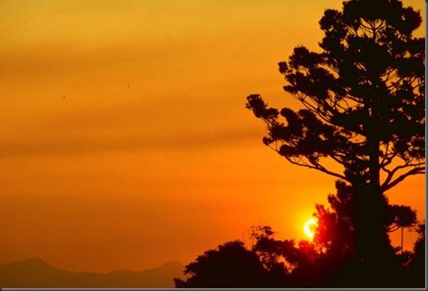 Lindas imagens do pôr do Sol (5)