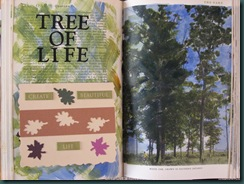 tree of life spread
