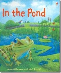 pond_