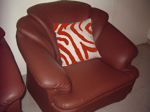 Painting Zebra Stripes on Cushion Cover